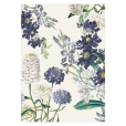 savethedate-botanical-garden-pepperandjoy-pattern