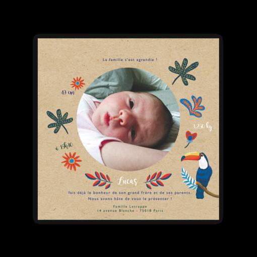faire part naissance garçon. photo de bébé au dos sur papier kraft. Dessin oiseau exotique toucan et fleurs